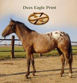 Dees Eagle Print