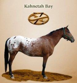 Kahnetah Bay