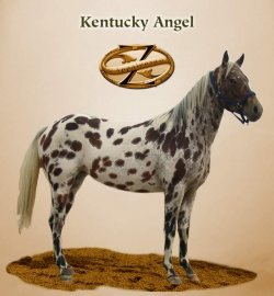 Kentucky Angel