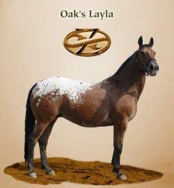 Oak's Layla