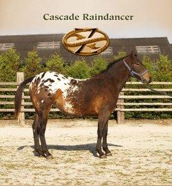 Cascade Raindancer