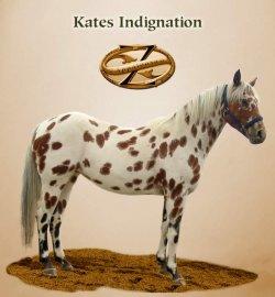 Kates Indignation