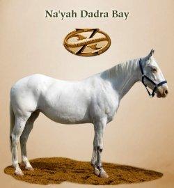 Na'yah Dadra Bay